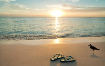 Top Tips for Pain Free Holidays!
